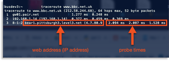 traceroute output image