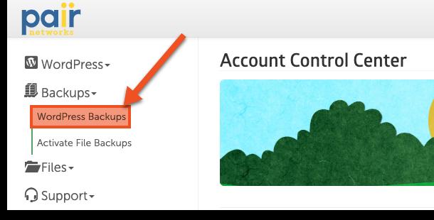 wordpress backups image